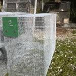 finger monkey cage