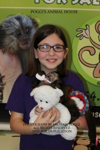 Little girl with glasses holding a Capuchin Monkey