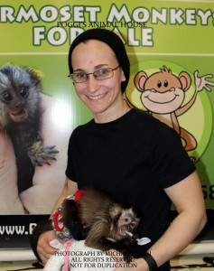 Girl with a tiny Capuchin Monkey