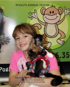 Happy girl holding a Capuchin